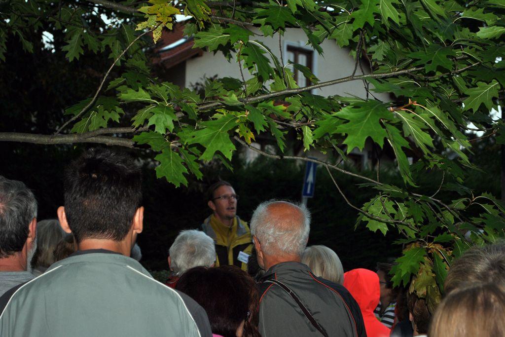 Fáklyás esti séta a soproni Sörházdombi-kilátóhoz
