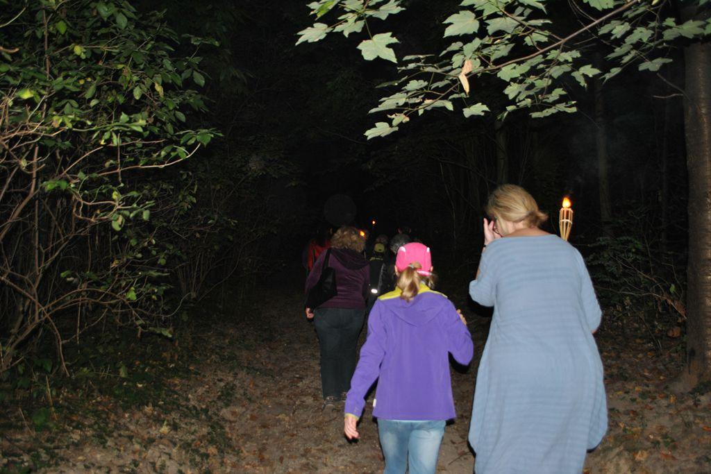 Fáklyákkal a soproni erdő alatt ismerkedve az éjszakai vadvilággal