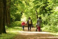 Könyű séta a Soproni Parkerdőben a Várisi sétaúton és Ojtozi sétányon