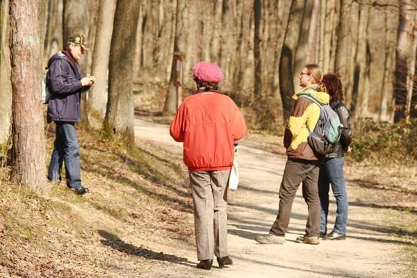 Séta túravezetővel a Soproni Parkerdőben a Városi sétaúton és az Ojtozi fasoron