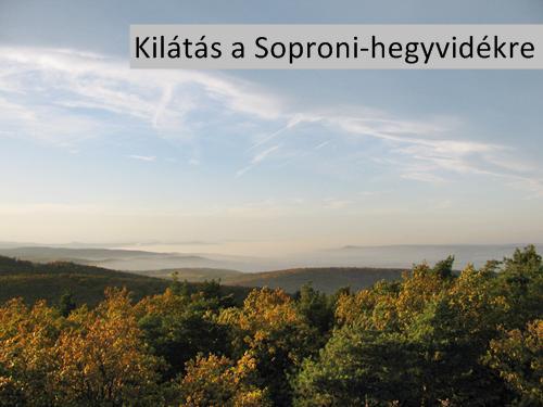 Kilátás a soproni Várhely-kilátóból