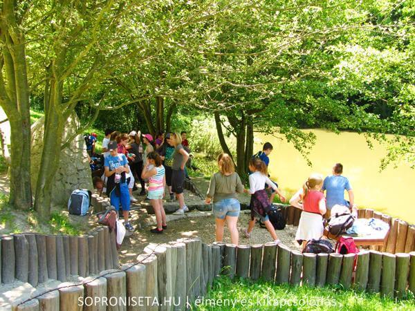Szalamandra-tó Soprontól nem messze Sopronbánfalva mellett