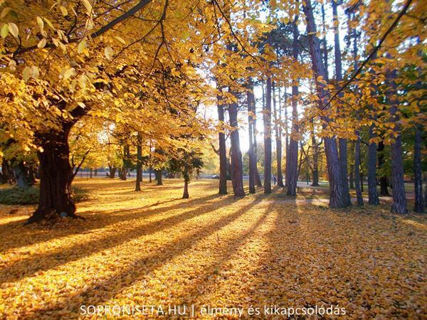 Az Erzsébet-kert Sopron bájos pihenőparkja