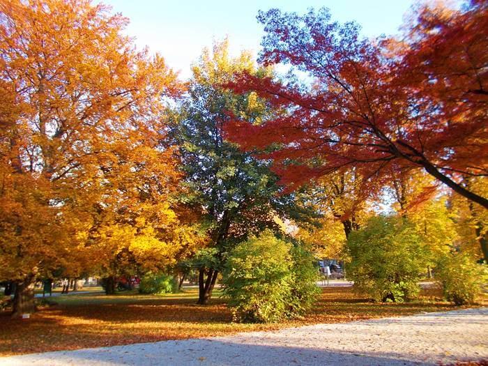 A soproni Erzsébet-kert egy őszi séta alkalmával tarka színpompában.