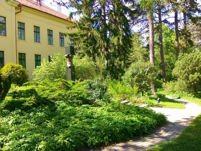 1956-os emlékmű a Soproni (Erdészeti) Egyetem Botanikus Kertjében