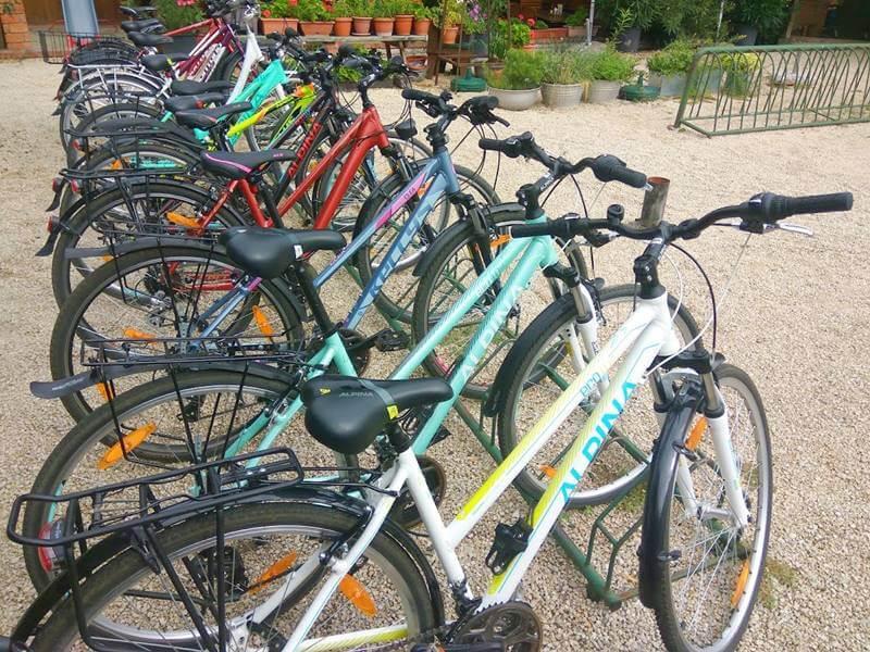 Trekking túrakerékpárok a Fertő-tó megkerüléshez